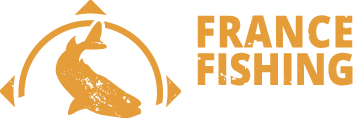 ffa_logo_temp